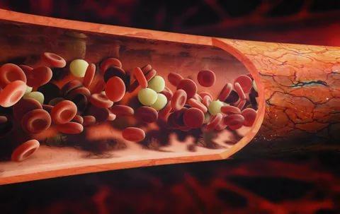 دلایل کاهش پلاکت خون
